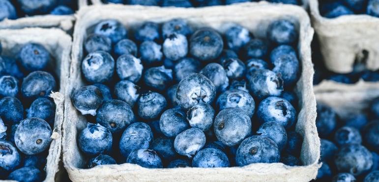 Blueberries   IFIS Publishing