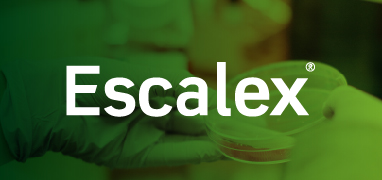 Escalex Logo