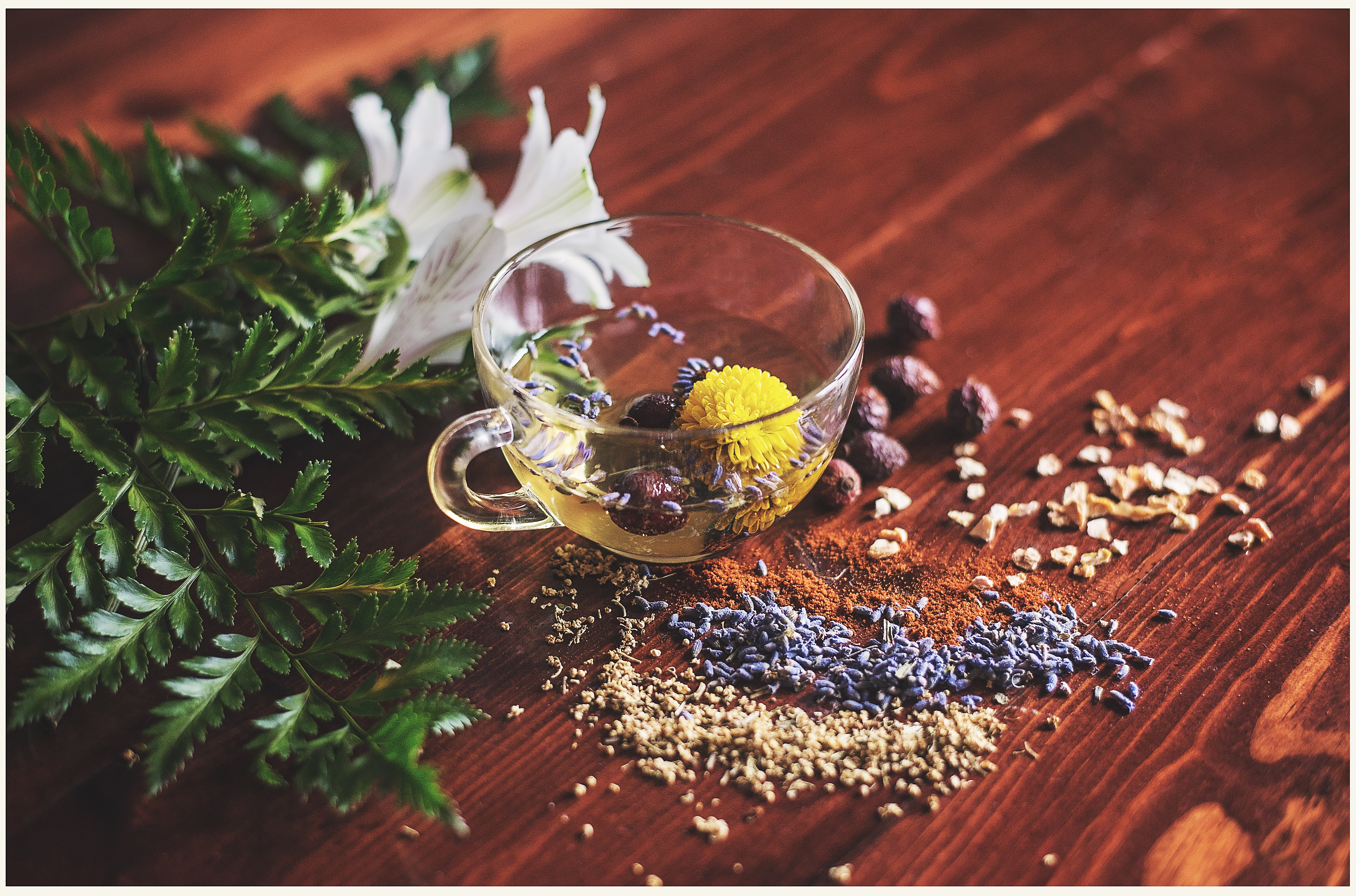 Botanicals and Herbal Remedies | IFIS Publishing